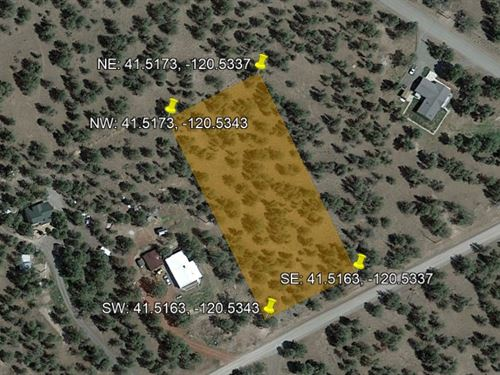 1.47 Acres of Treed Land in Norcal : Alturas : Modoc County : California
