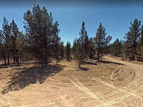 Land in Modoc Recreational Estates : Alturas : Modoc County : California