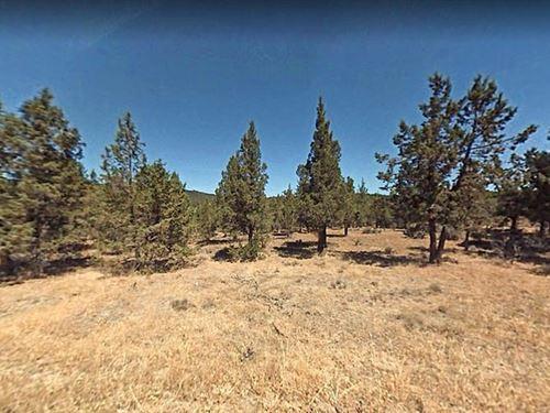 1.6 Acres in Alturas, CA : Alturas : Modoc County : California
