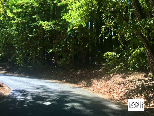 Private Hilltop Lot In The Redwoods : Ben Lomond : Santa Cruz County : California