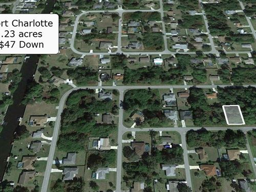 Pristine .23 Acre Lot on Paved Road : Port Charlotte : Charlotte County : Florida