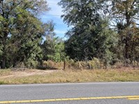 This Stunning 19.45 Acres Mol Kraus : Inverness : Citrus County : Florida