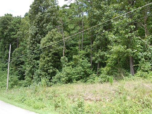 Large Lush Residential Lot : Oxford : Talladega County : Alabama