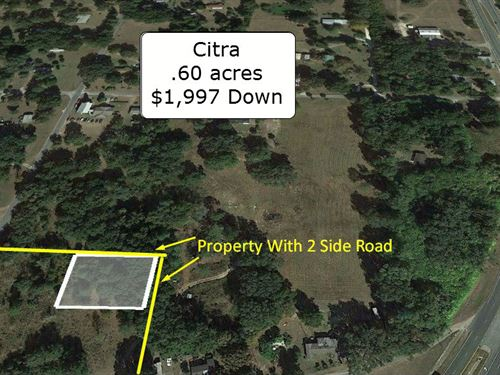 .60 Acre Partially Cleared Lot : Citra : Marion County : Florida