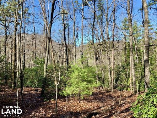 Country Creek Homesite Tract : Cleveland : Pickens County : South Carolina