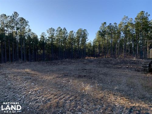 9.5 Acre Homesite in Pines : Reagan : Henderson County : Tennessee