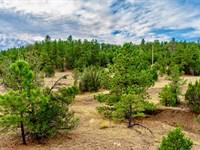 Wooded Lot Near Lake & State Park : Trinidad : Las Animas County : Colorado
