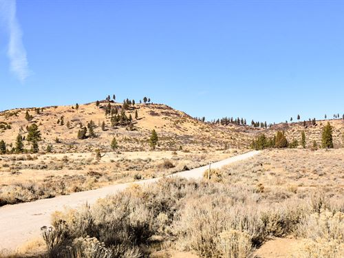 Own Sprawling Acres Among Trees : Chiloquin : Klamath County : Oregon