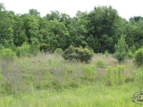 Incredible 0.34 Acre Property : Bullard : Cherokee County : Texas