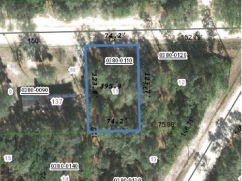 Ready to Build Your Florida Home : Interlachen : Putnam County : Florida