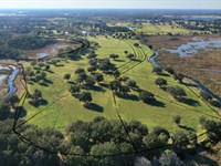 Oak Point Preserve Homesites 29 Lot : Clermont : Lake County : Florida
