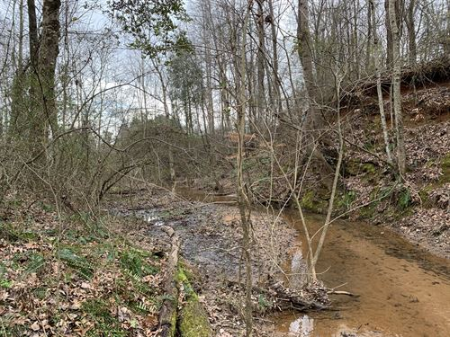 Wooded Acreage Country Setting : Inman : Spartanburg County : South Carolina