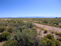 Mountain Views, Driveway, 135/Month : Blanca : Costilla County : Colorado