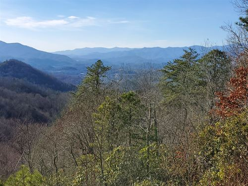 3-10 Acre National Forest Lots : Cherokee : Jackson County : North Carolina