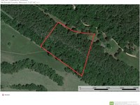5 Acre Estate Lot Pineville, MO : Pineville : McDonald County : Missouri