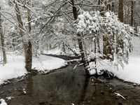 Oak Meadow Views : Cortland : New York