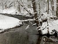 Finger Lakes Area : Cortland : New York