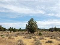 Large Lot in Rural Neighborhood : Alturas : Modoc County : California