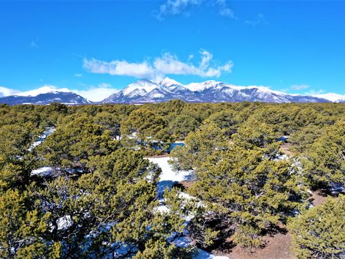 Upscale Eagle Moon Ranch : Salida : Chaffee County : Colorado