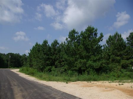9.9 Acres Homes Only Creek Frontage : Odenville : Saint Clair County : Alabama