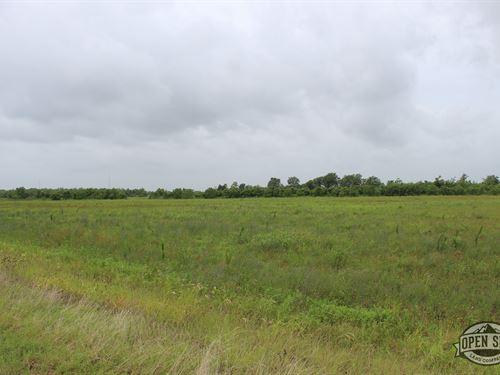 .80 Acres in Angleton, TX : Angleton : Brazoria County : Texas