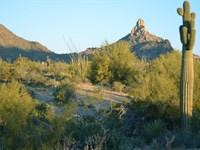 Scottsdale High Desert Homesite : Scottsdale : Maricopa County : Arizona
