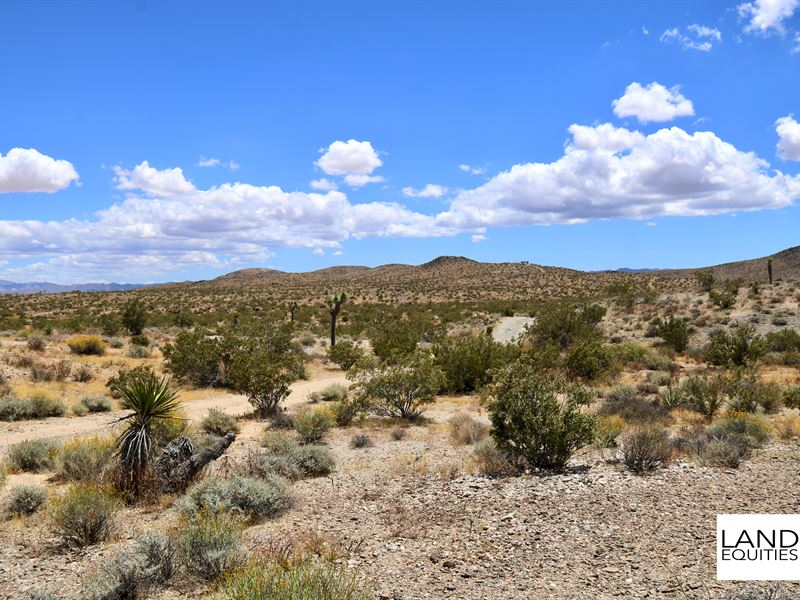 Best Deal In Yucca Valley $149 /Mo : Yucca Valley : San Bernardino County : California