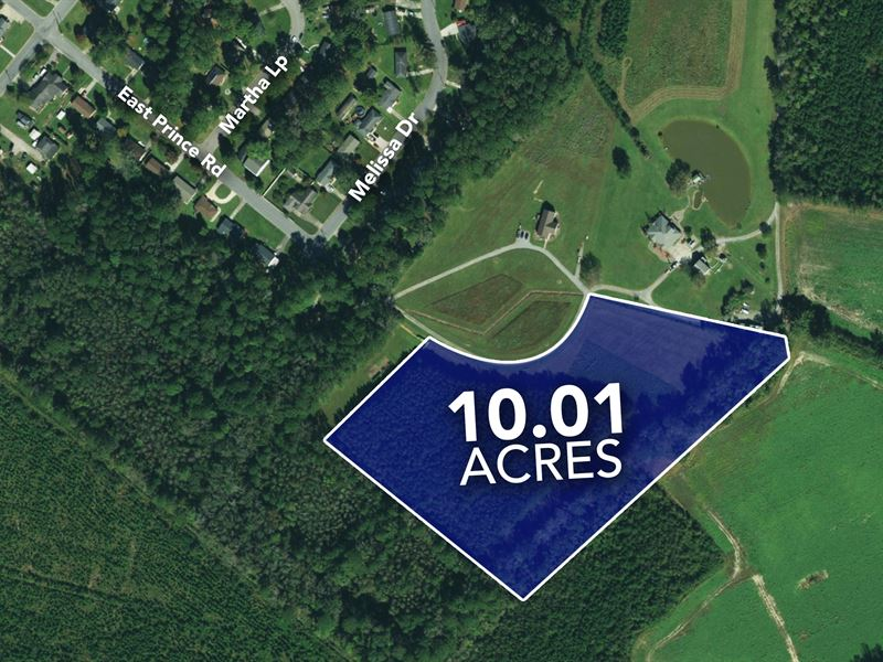 Large 10 Acre Homesite : Farmville : Pitt County : North Carolina