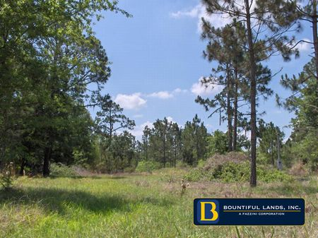 1 Acre Lake Caloosa $29,990 : Frostproof : Polk County : Florida