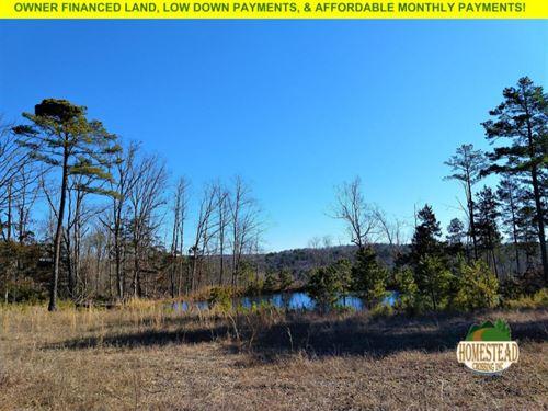 Gorgeous Property With A Pond : Houston : Texas County : Missouri