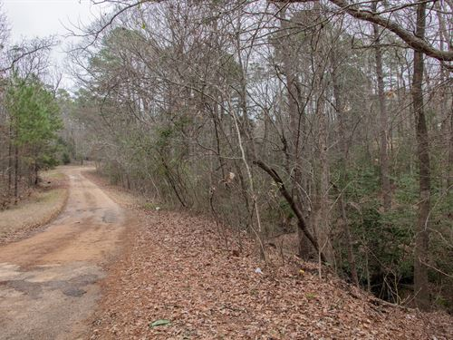 Hunter Paradise 0.14 Combined Lot : Jefferson : Marion County : Texas