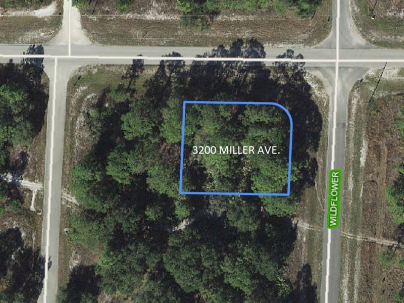 Corner Lot in Highland County : Lake Placid : Highlands County : Florida