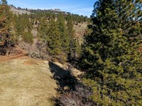 20 Acres Along Clearwater River : Lenore : Clearwater County : Idaho