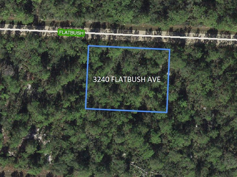Double Lot .46 Acres, Lake Placid : Lake Placid : Highlands County : Florida