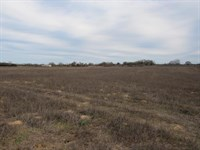 Vacant Residential Land To Build : Oakwood : Leon County : Texas