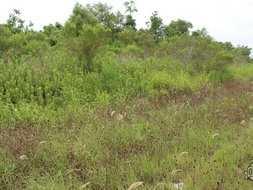 Great 1.04 Acres in Bluff Dale, TX : Bluff Dale : Erath County : Texas