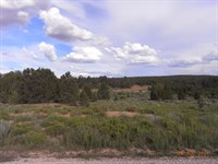 Candy Kitchen NM Seasonal Lake Lot : Candy Kitchen : Cibola County : New Mexico