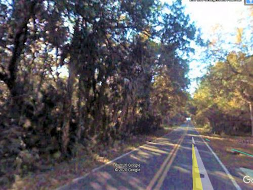 .96 Acre Residential Land Fsbo 44 : Georgetown : Putnam County : Florida