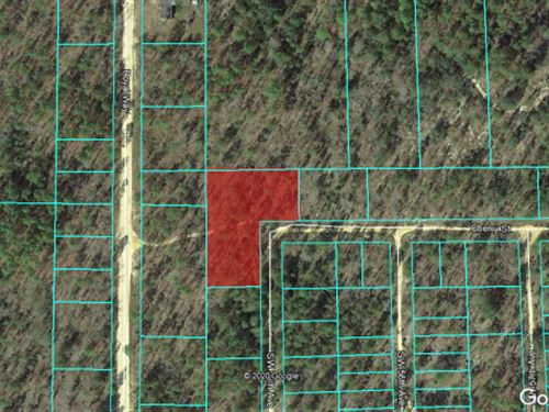 1.03 Acre Residential Lot Fsbo 47 : Interlachen : Putnam County : Florida
