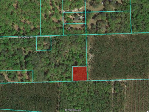 1 Acre of Agricultural Land Fsbo 49 : Satsuma : Putnam County : Florida