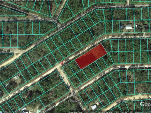 .92 Acre Property Fsbo 50 : Interlachen : Putnam County : Florida