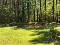 Beautiful 1 Ac With Home : Gloster : Amite County : Mississippi