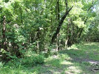 .47 Acres Property in Gordonville : Sherwood Shores : Grayson County : Texas