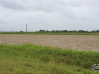 1.67 Acres Property in Kemp, TX : Kemp : Kaufman County : Texas