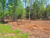 8.97 Acres Timber Land For Sale, Mc : McComb : Pike County : Mississippi