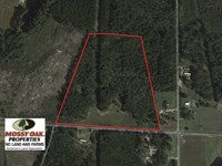 19.47 Acres of Residential And Rec : Bunnlevel : Harnett County : North Carolina