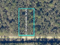 Mobile Home Friendly Florida Lot : Hastings : Saint Johns County : Florida