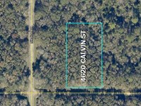 Lot in Up & Coming Flagler Estates : Hastings : Saint Johns County : Florida