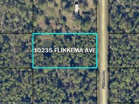 Fun Florida Lot, Flagler Estates : Hastings : Saint Johns County : Florida