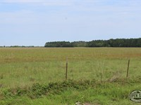 .25 Acres in Mineral Wells, TX : Mineral Wells : Palo Pinto County : Texas